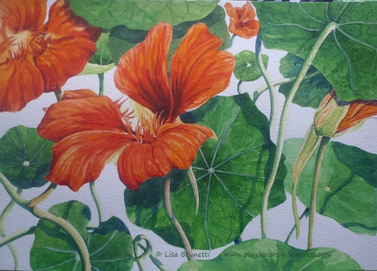How about a bright happy nasturtium to smile on your day?  (watercolor)