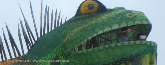 P1920145 rycardo iguana9