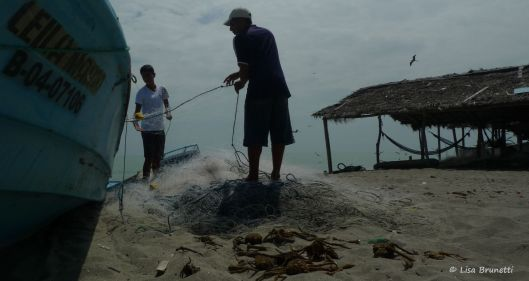0 P1530443 fishing nets