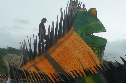 P1920154 rycardo iguana9