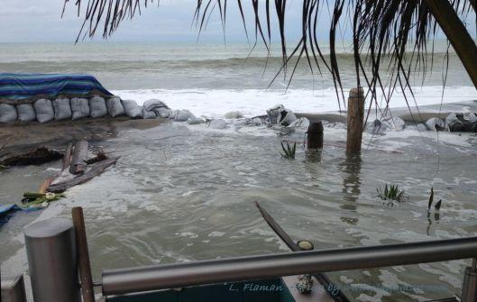 Late afternoon - Feb 02, 2014 - El Matal Ecuador - Homeowner photo
