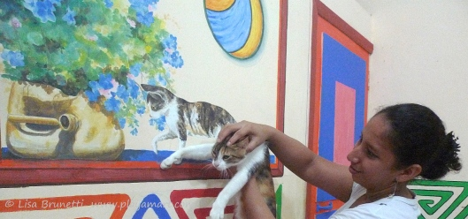 05 P1750053 restaurant cat