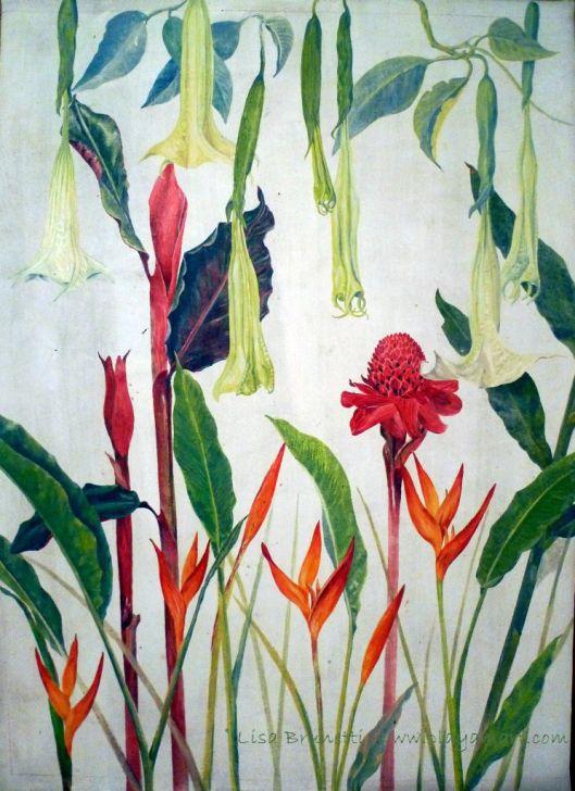 """Botanical Study- Acrylic - 38"""" x 46"""""""