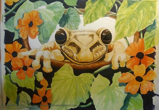 P1950722 thunbergia portal z frog
