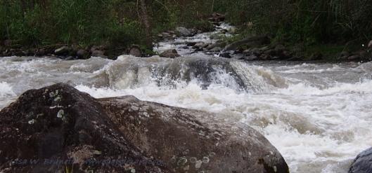 Rio Cinto - near Mindo Ecuador