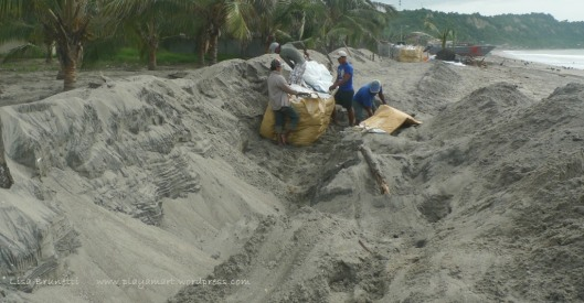 P1960452 ll sand bagging