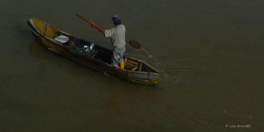 P1480950 cangrejo canoa o