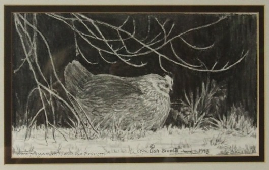 Pencil - 1993 -Hen with chicks beneath forsythia...
