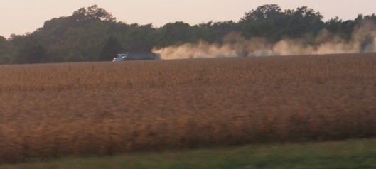 Soybean Harvest near Merigold Mississippi