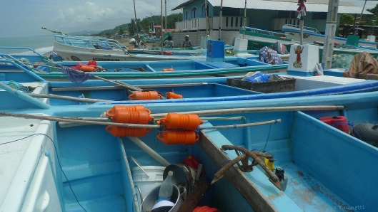 Twice a day the boats are launched at high tide and return at high tide.