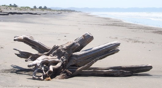 PB070365 la division nov 7 2014 driftwood