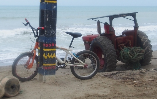 PC170710 NOON TIDES  EL MATAL DEC 2014 bicycle y tractor