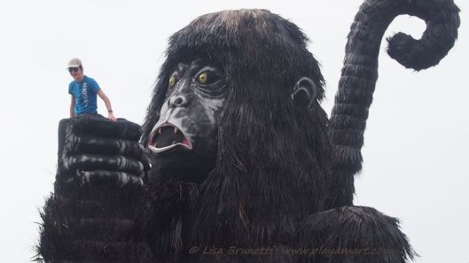King Kong Sighted in Jama Ecuador!