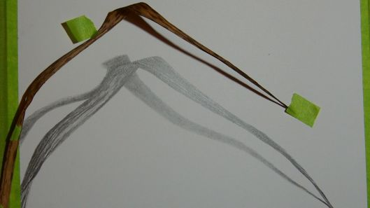 Ah-ha!  A shadow makes a difference; shall we draw more leaves?