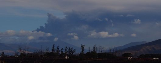Seeing Cotopaxi blowing off steam was quite sobering. (Taken from airport.)