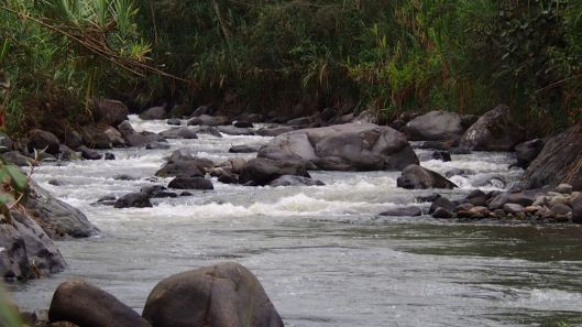 Rio Cinto