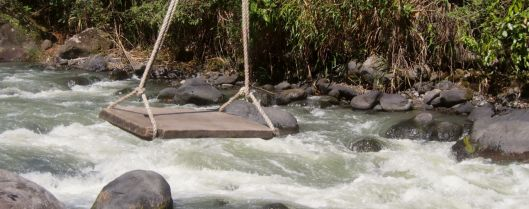 Would anyone like to swing across the river?!