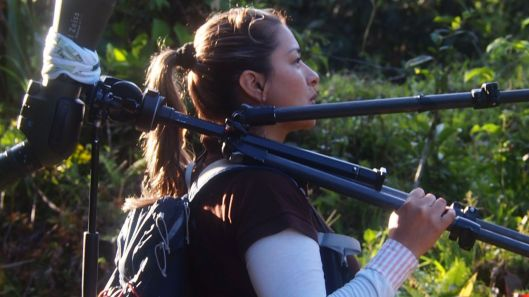 Sandra Patino - (Bird of Paradise Tours/Mindo Ecuador)