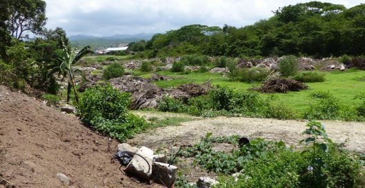 p1140366-jama-earthquake-material-small-file
