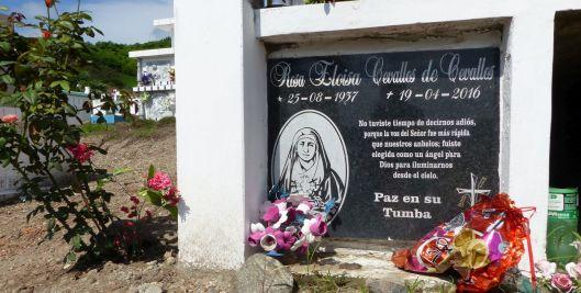 p1170930-jama-cemetery-rosa