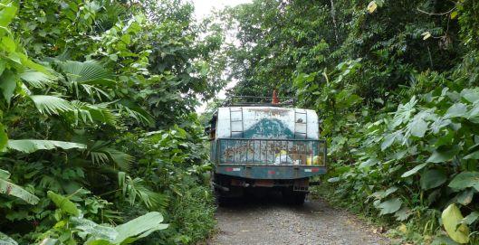 P1250283 ranchero bus