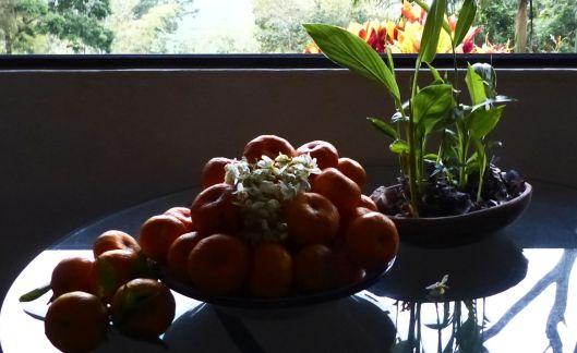 P1530157 mandarina still life
