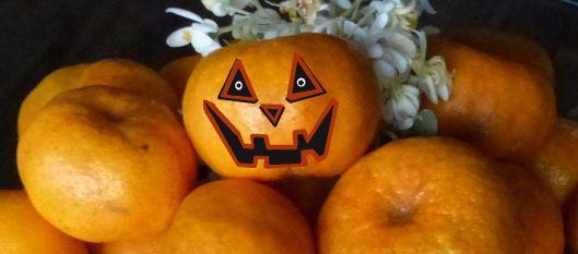 P1530178 mandarina pumpkins