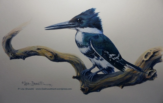P1990506 green kingfisher acrylic