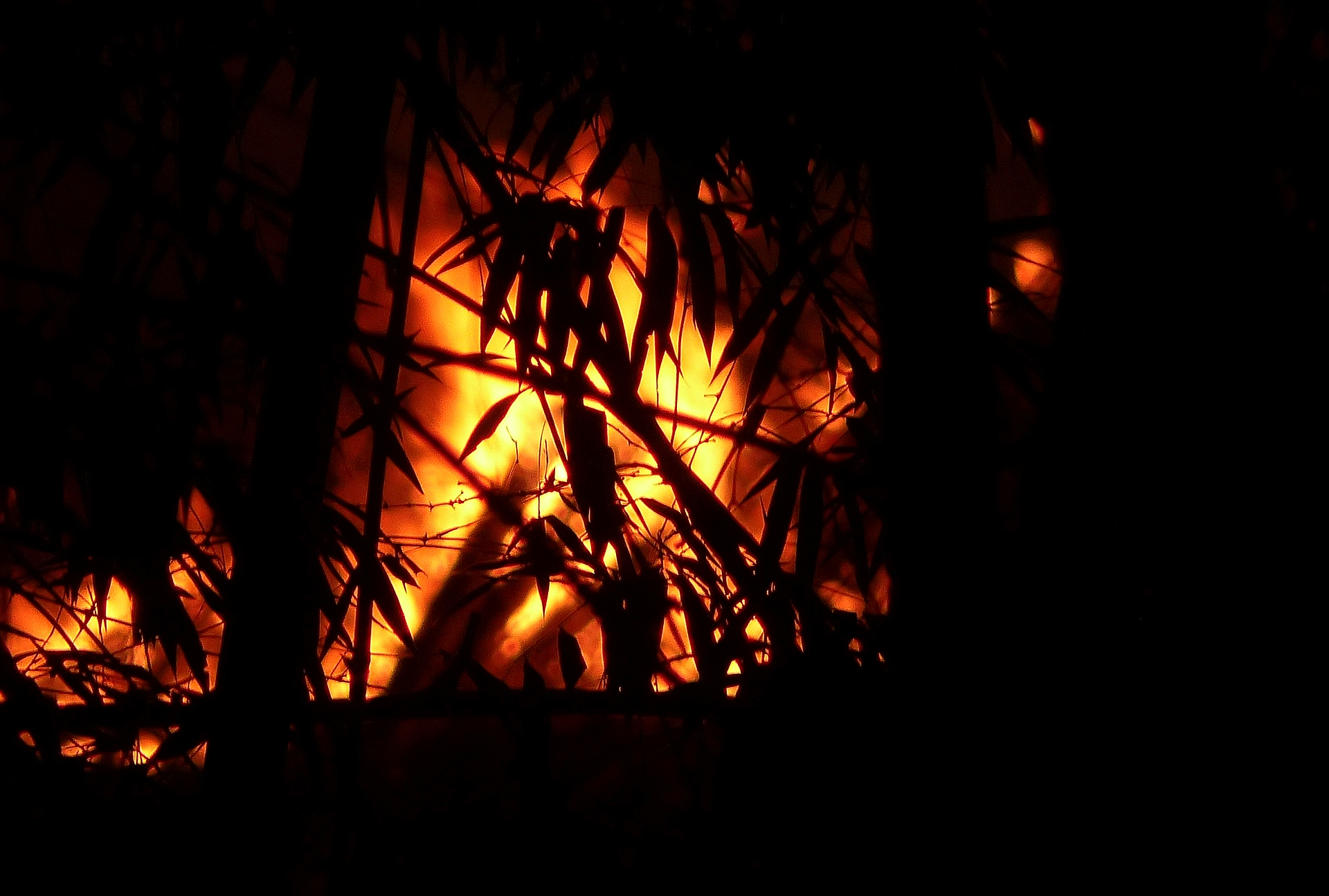 P2030846 the fire july 10 night