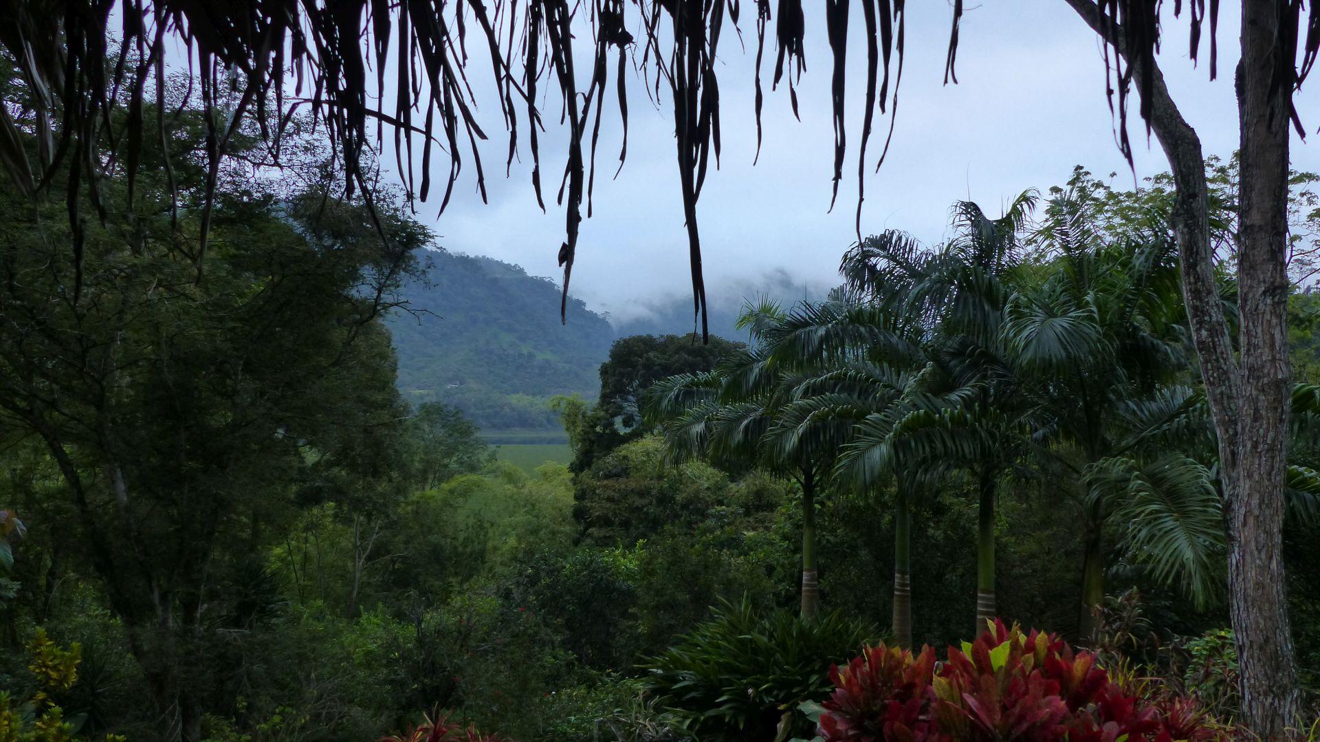 P1370557 morning view