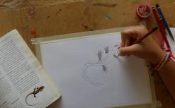 P2440744 daniela drawing lizard
