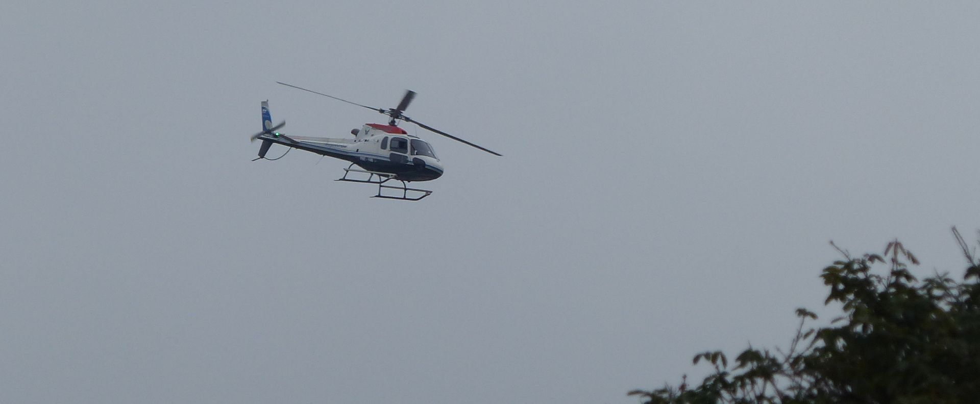 P2820971 police helicopter