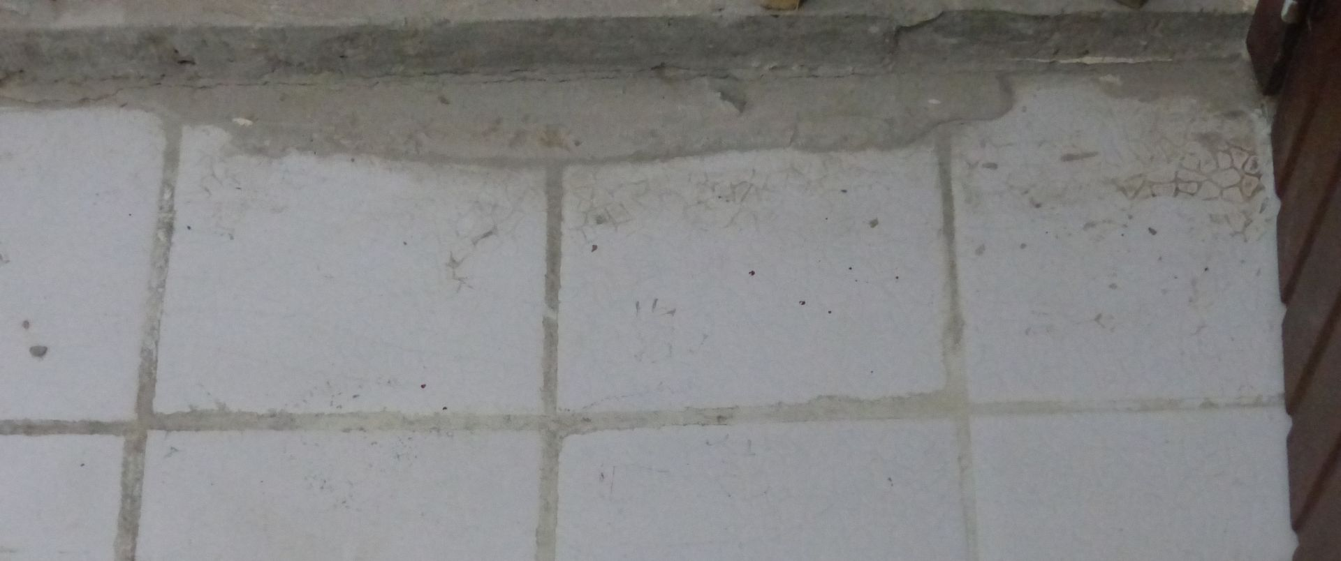 P2820994 cement on tile floor