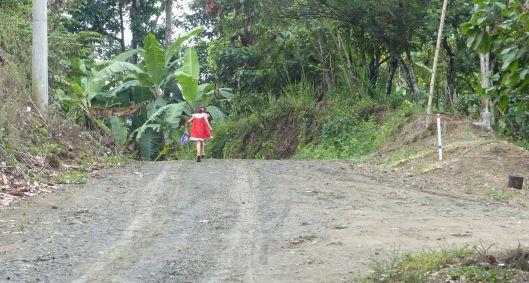 P2880873 little girl red dress