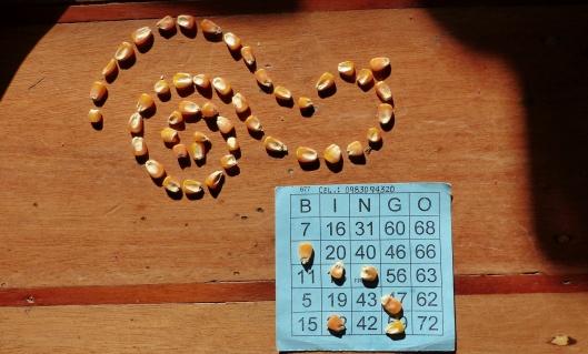 P2210733 bingo
