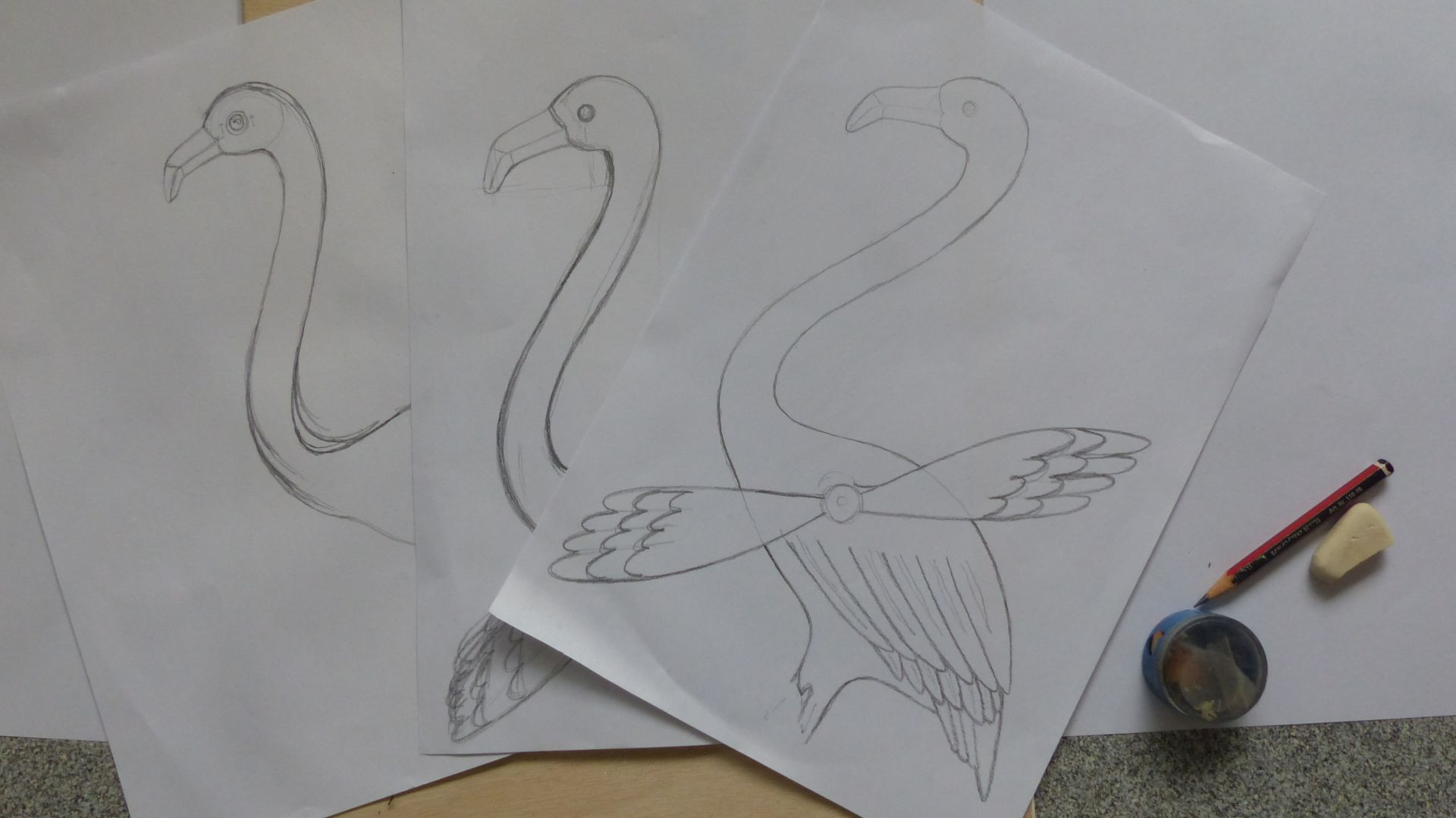 06 for post P2970937 flamingo sketches