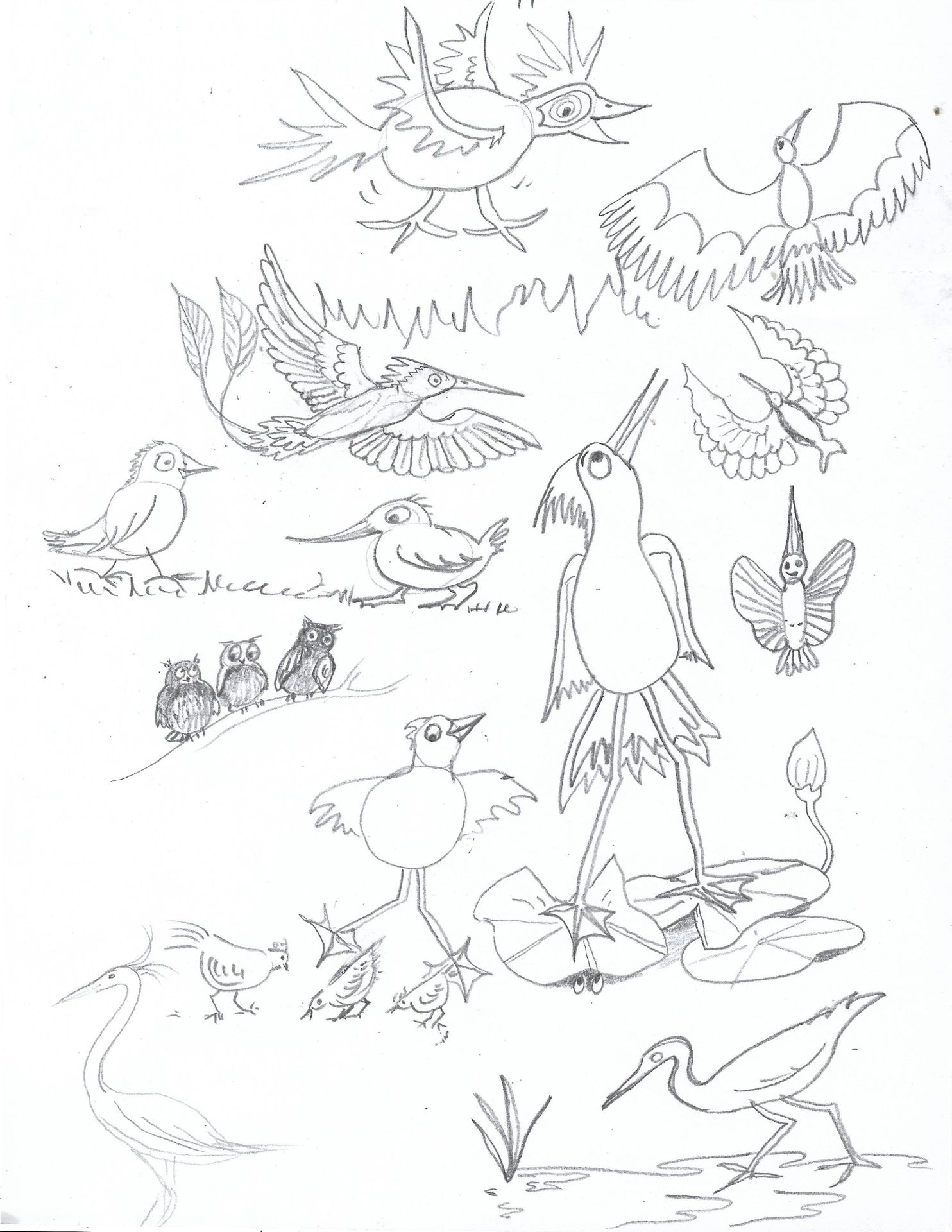 09b for post DAB DAY misc birds 01