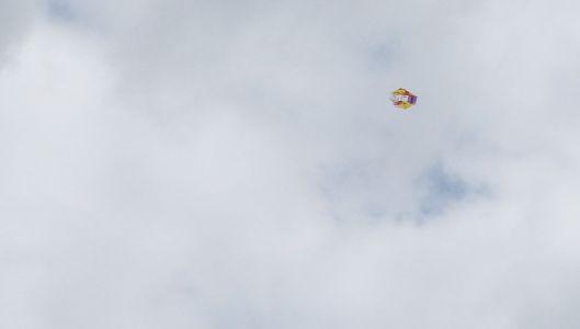 P3060491 kite