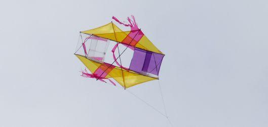 P3060492 kite